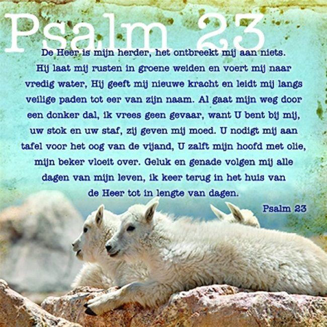 psalm 23 de heer is mijn herder, het ontbreekt mij aan niets. hij