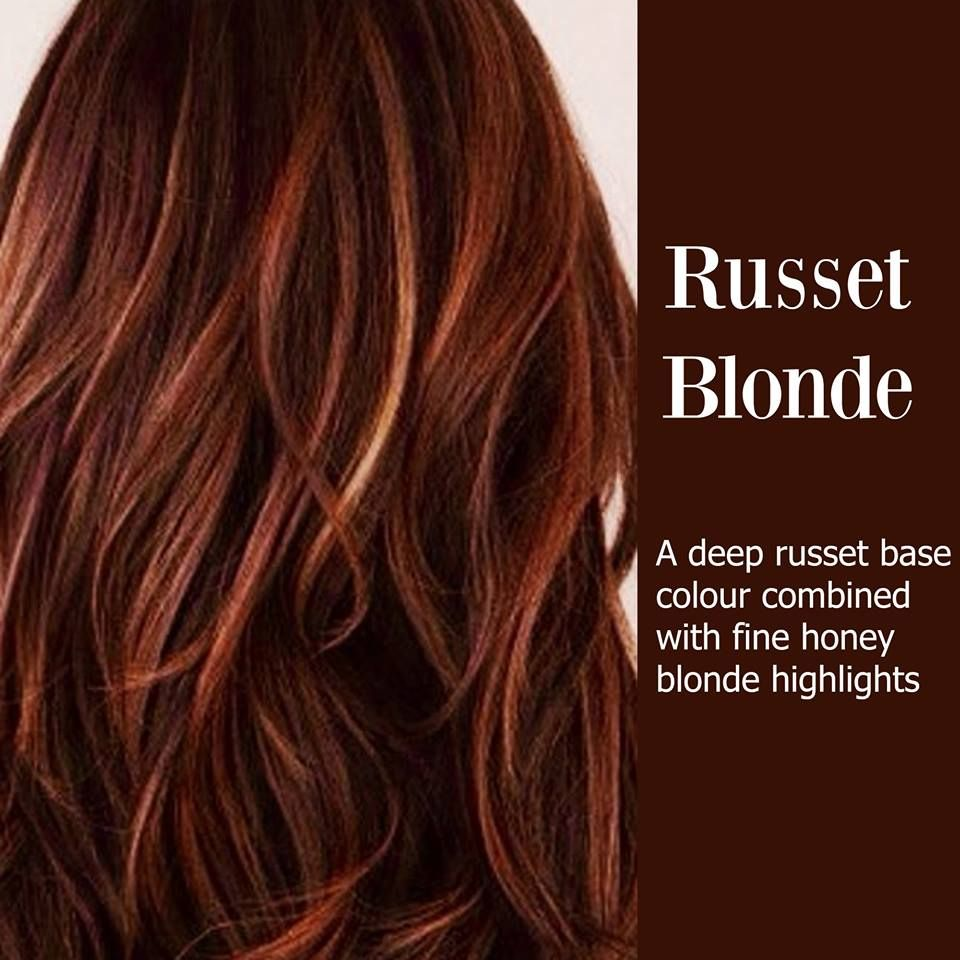 russet hair honey blonde highlights