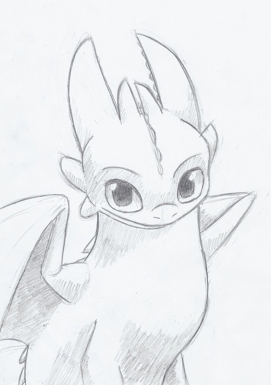 how to draw toothless videos