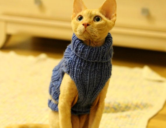 Ravelry: Cats love sweaters pattern by Christine Landry | Knitting ...