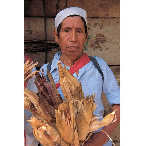 Rituales del maíz