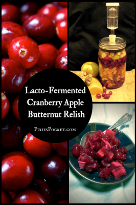 Make Your Own Cranberry Apple and Butternut Relish Lacto Fermented Recipe Homesteading  - The Homestead Survival .Com
