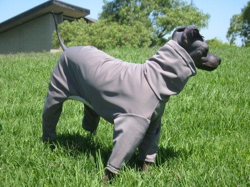 BuddyWear fleece Romper Jammie outfit for Italian Greyhounds Cresteds and all small dogs up to 18. Hairless Terriers