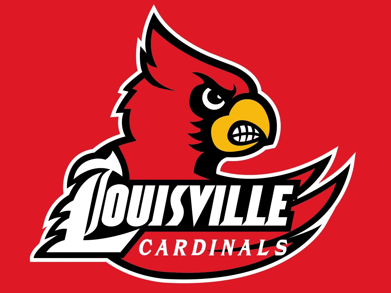 University of Louisville 2013 3 x 5 Flag by Wincraft