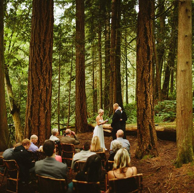 Forest Elopement At Snoqualmie Falls: Samantha + Calen. Very Small  WeddingSmall ...