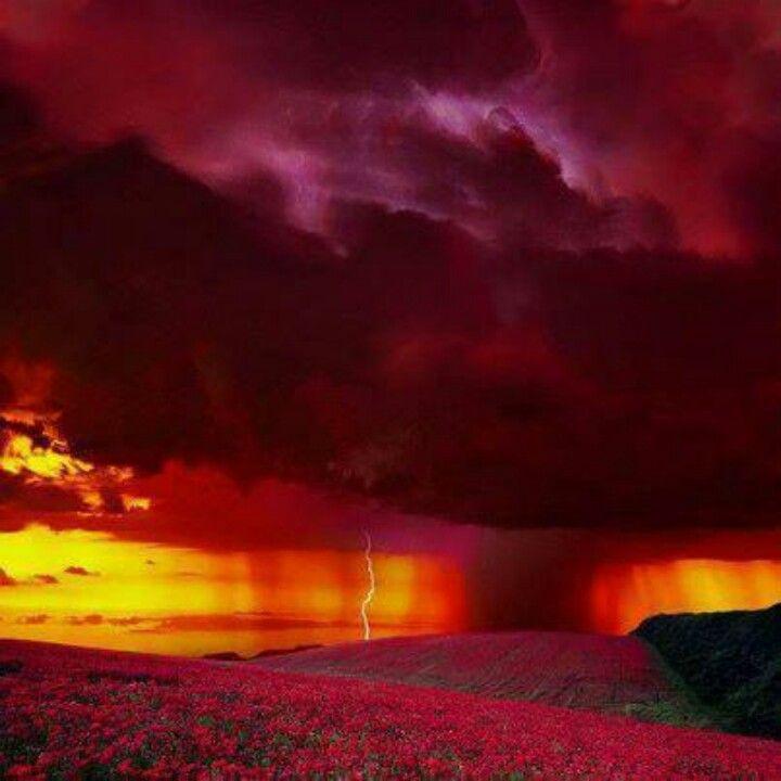 Tormen roja