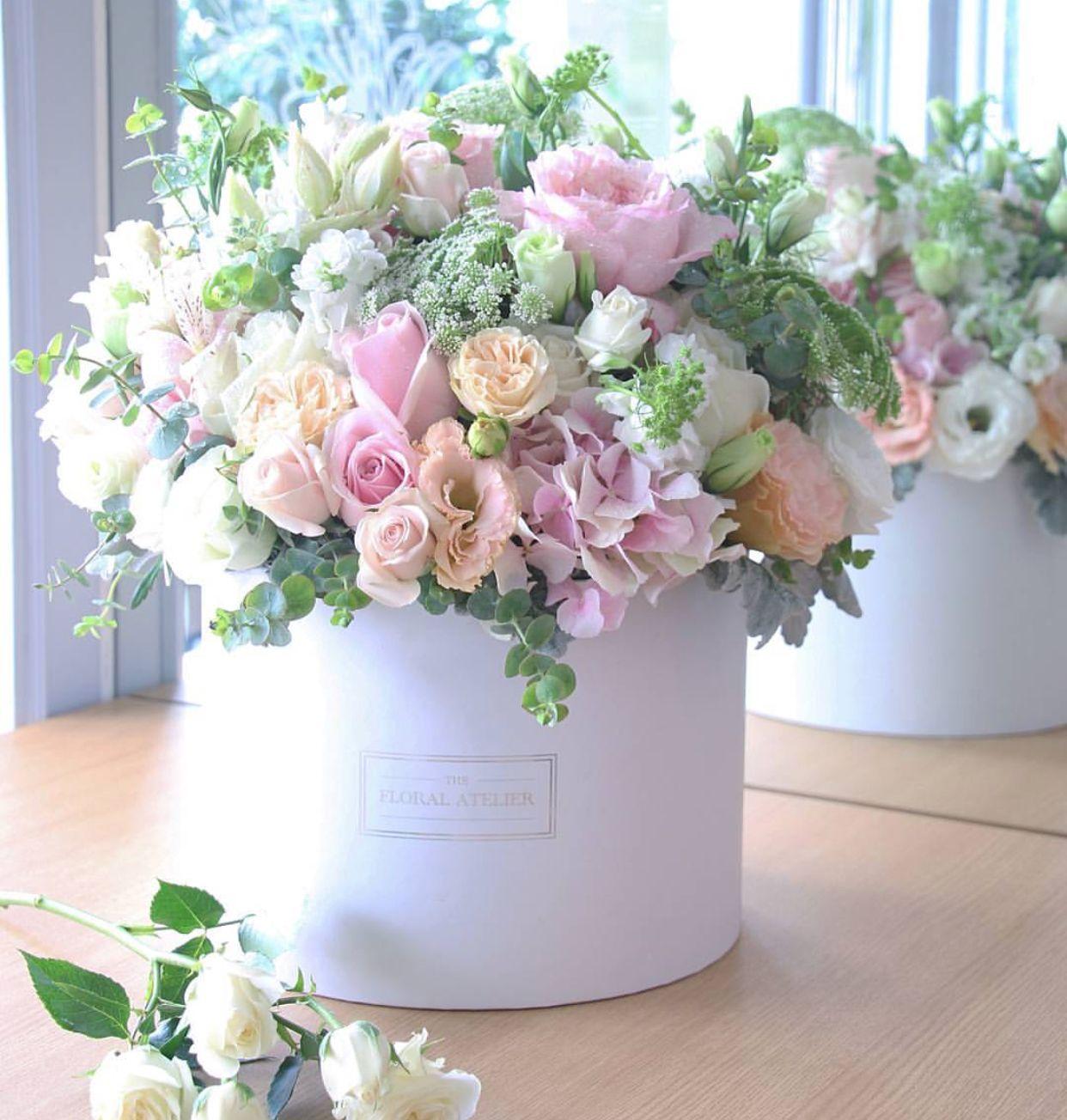 Pin by Diann Howard on FLOWER BOX 1 Flowers roses