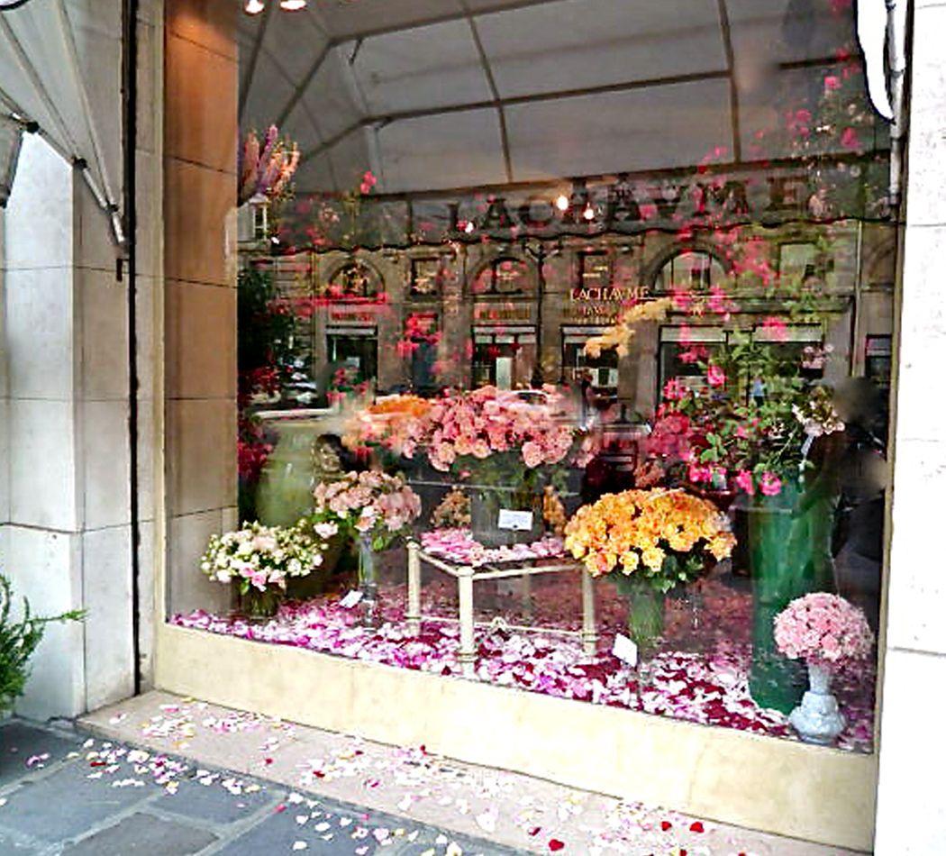 Flower Design Shop: Flower Shop Interiors