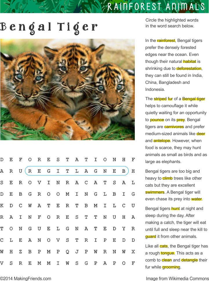 Makingfriends Com Tiger Facts For Kids Rainforest Animals Bengal Tiger Facts