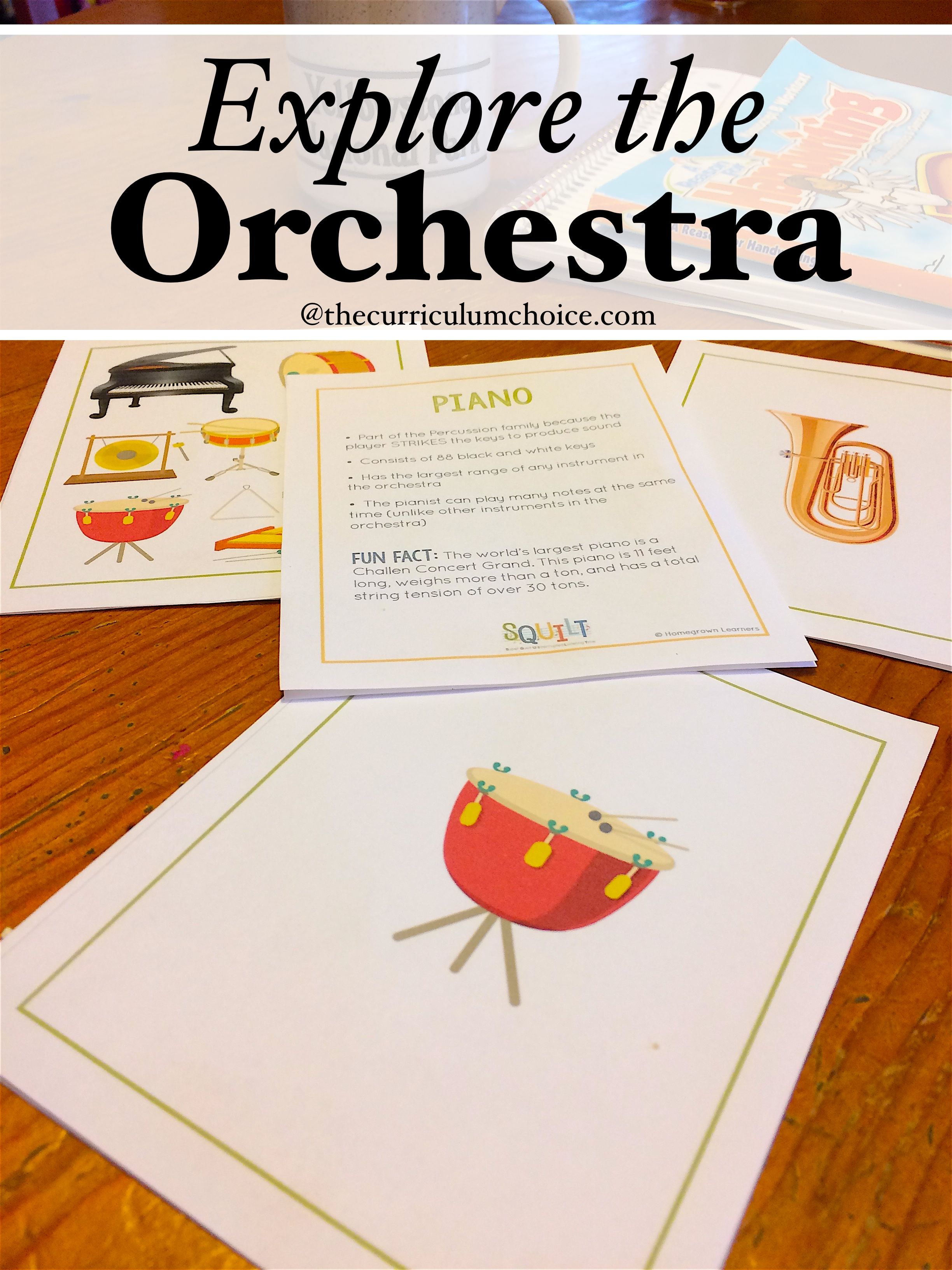 Explore The Orchestra With Images