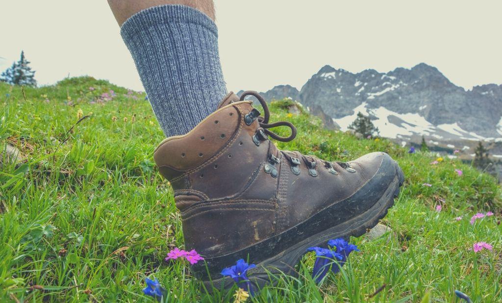 5 Best Socks for Walking Long Distances