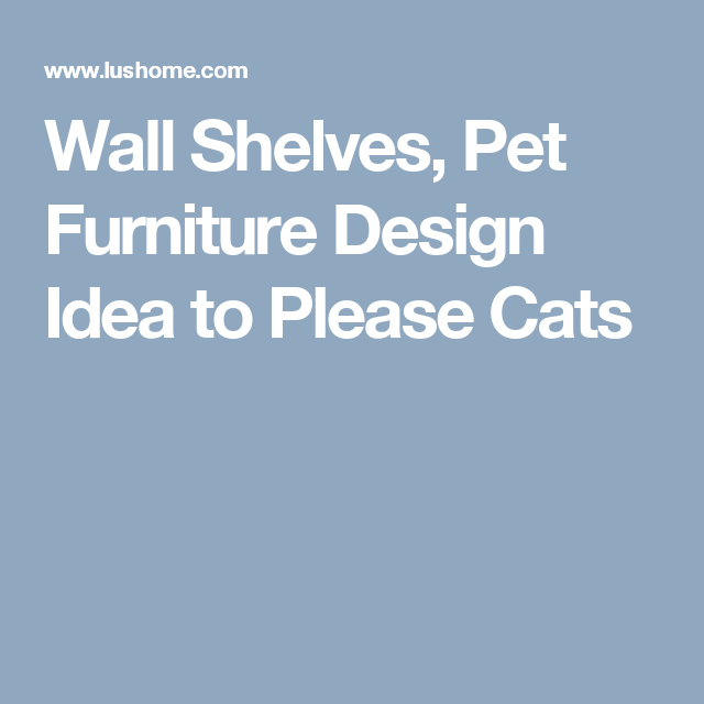 Wall Shelves, Pet Furniture Design Idea to Please Cats