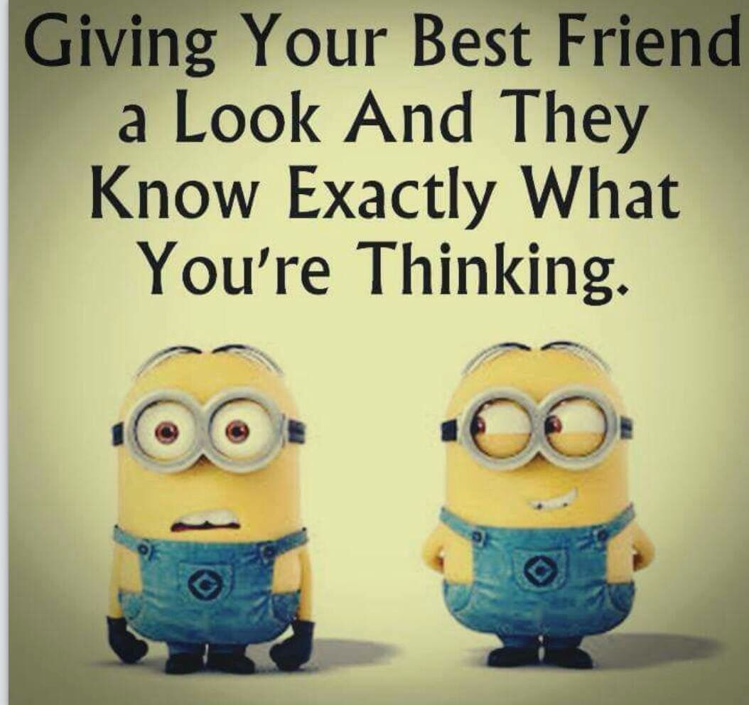 Funny Quotes About Friendship And Laughter Minions  Minionssss  Pinterest  Funny Minion Laughter And