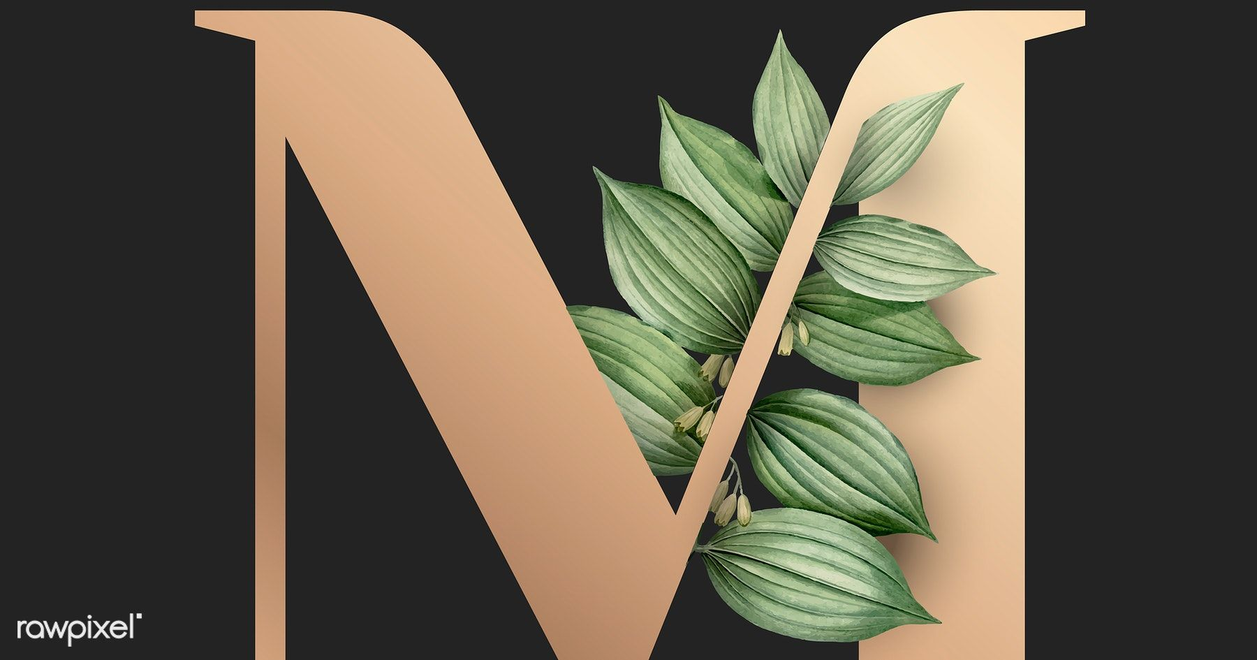 Download Premium Vector Of Botanical Capital Letter M Vector 584980 Lettering Botanical Lettering Fonts