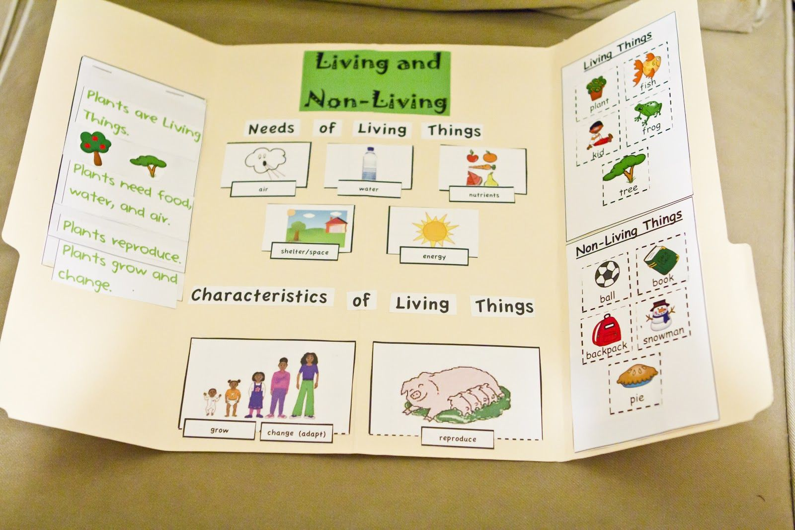 Living And Non Living Things Lapbook And Experiments