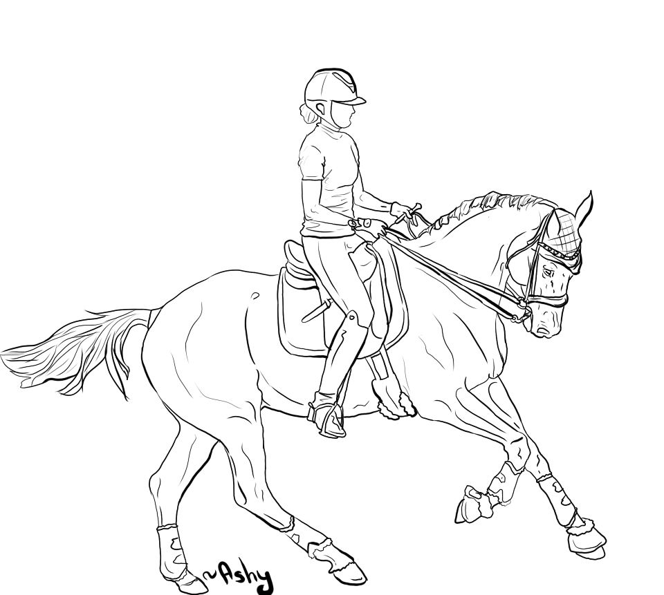 Lineart Horse Drawings Horse Coloring Pages Animal Sketches