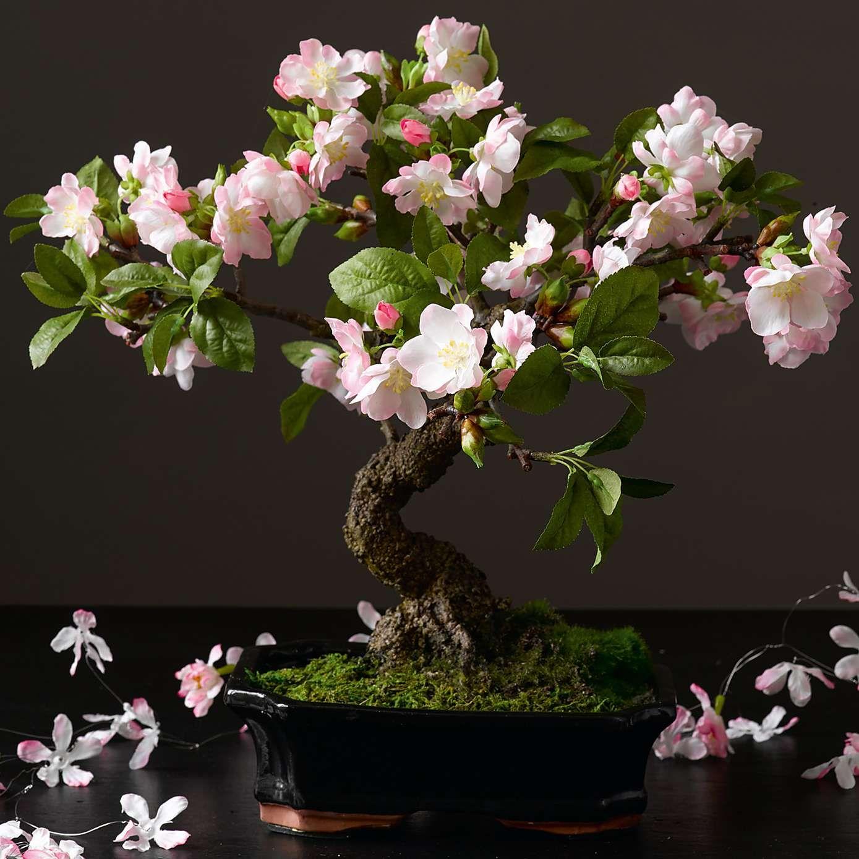 Cherry Blossom Bonsai Tree Dunelm Cherry Blossom Bonsai Tree Artificial Flowers And Plants Artificial Flowers
