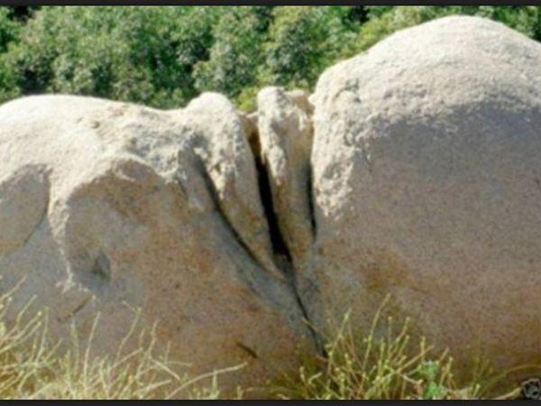 Natural vulva pics