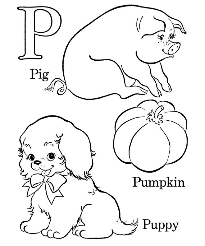 alphabet p for pig pumpkin and puppy coloring pages  abc