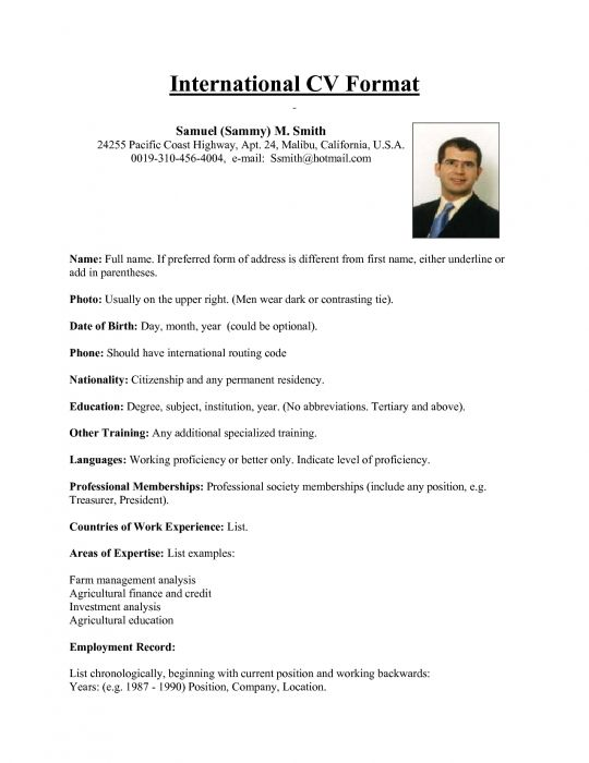 international resume format for overseas job this sum