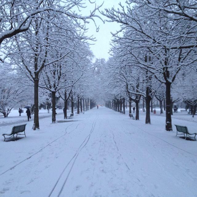 Parc des Bastions under the snow