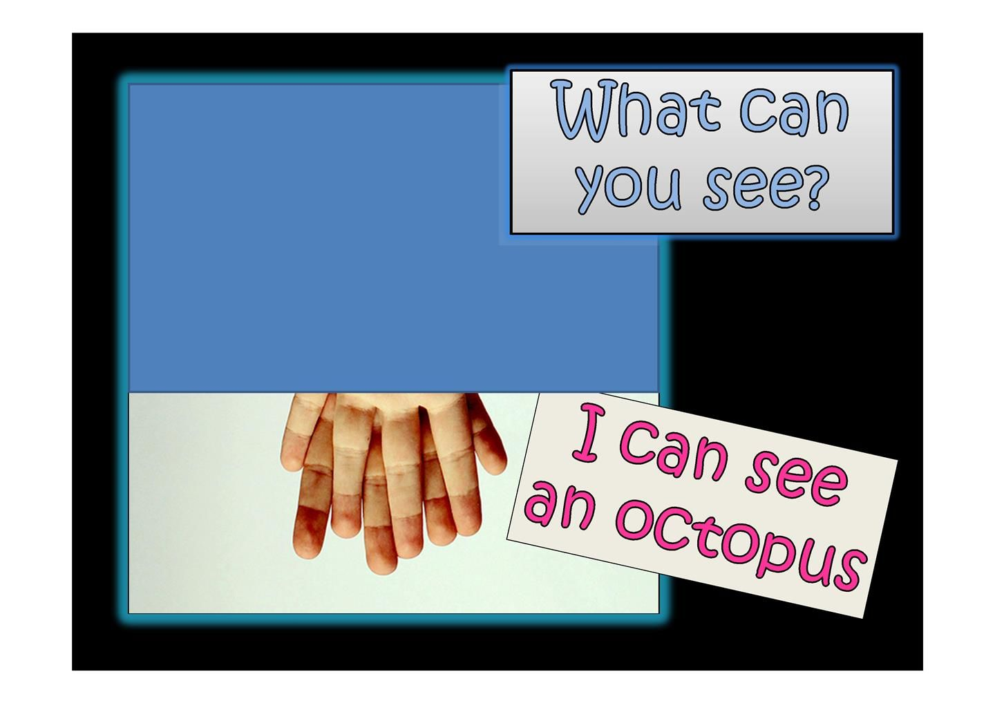 What Can You See