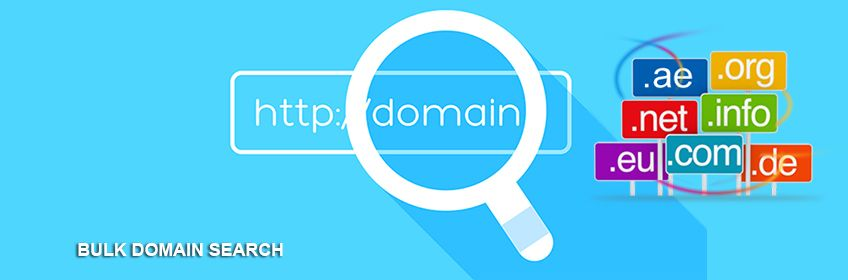 Find Domains In Bulk With Host It Smart To Save Your Time And