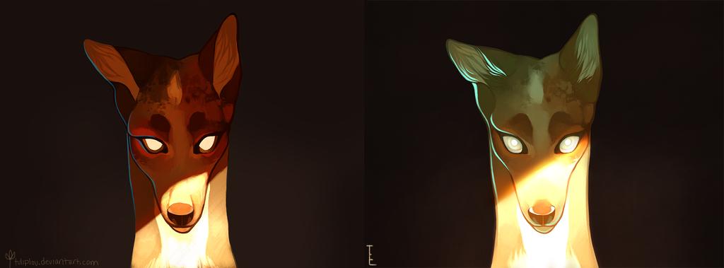 Wide Eyes Comparison by tuliplou.deviantart.com on @deviantART