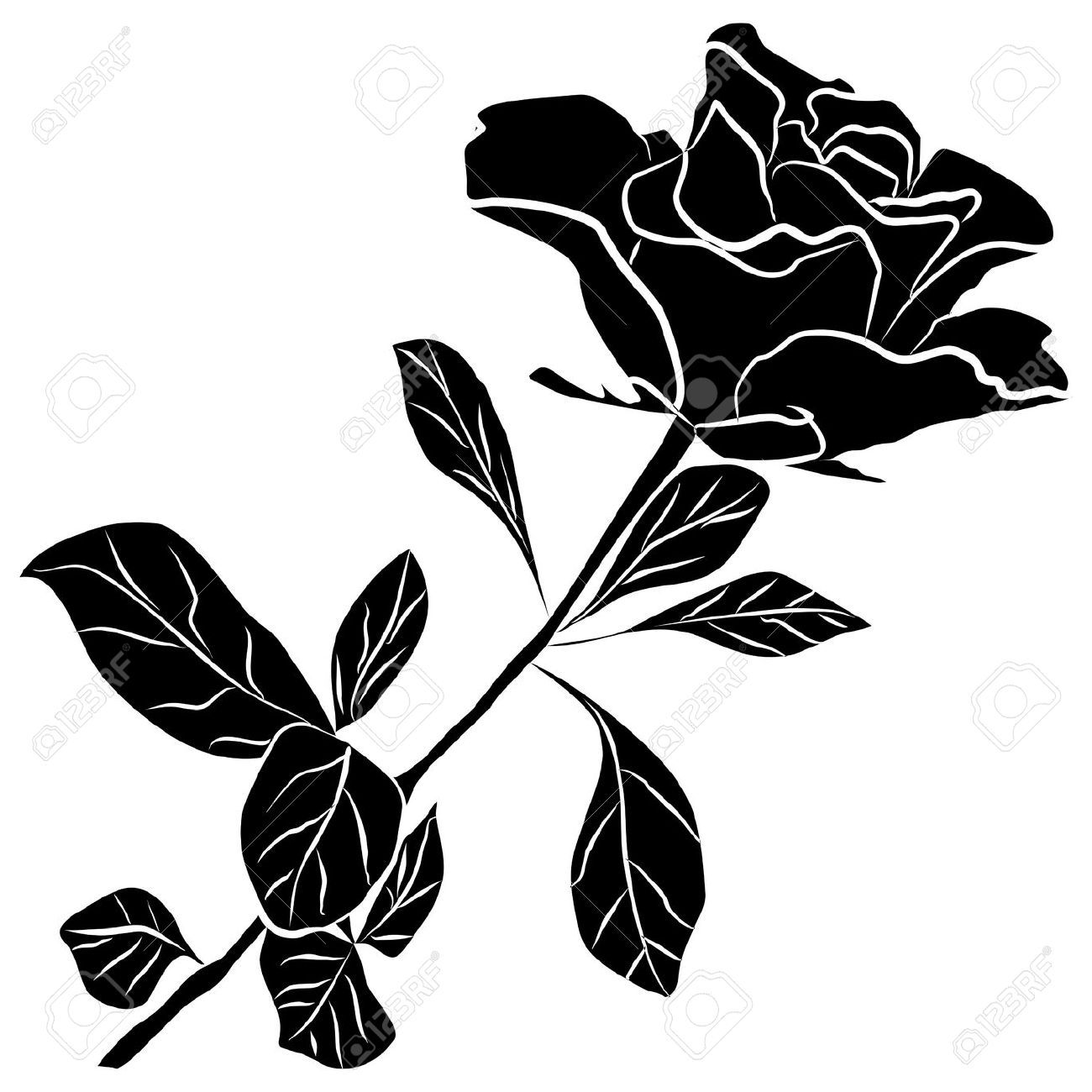 dog rose flowers vector set on white background Rose