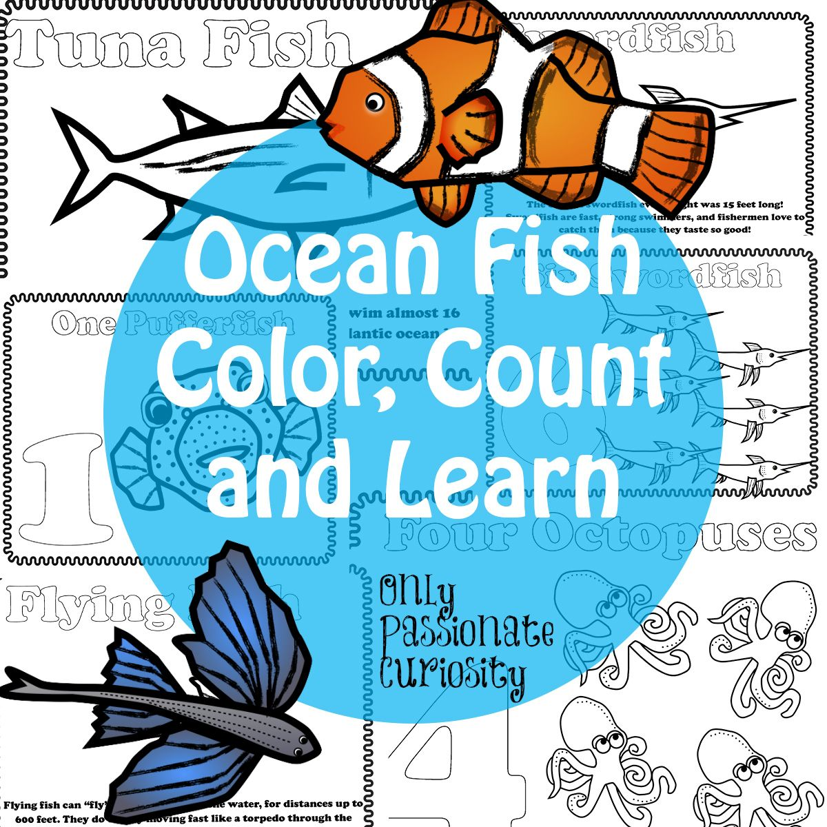 Ocean Fish Color, Count and Learn | Count, Learning and Preschool prep