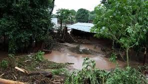 La tala de arboles causa las inundaciones