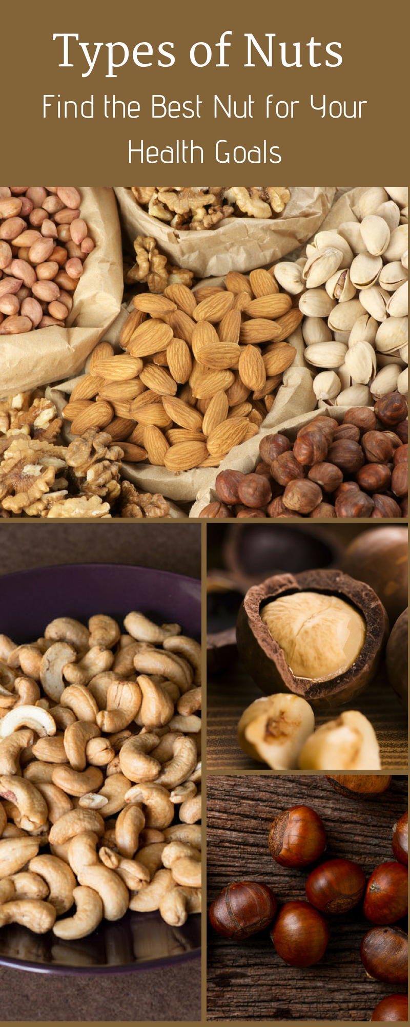 of Nuts – Find the Best Nut for Your Health Goals Nuts are powerful for health - but which one is best? In this post, we look at the various types of nuts and consider the differences between them.Nuts are powerful for health - but which one is best? In this post, we look at the various types of nuts and consider the differences between them.