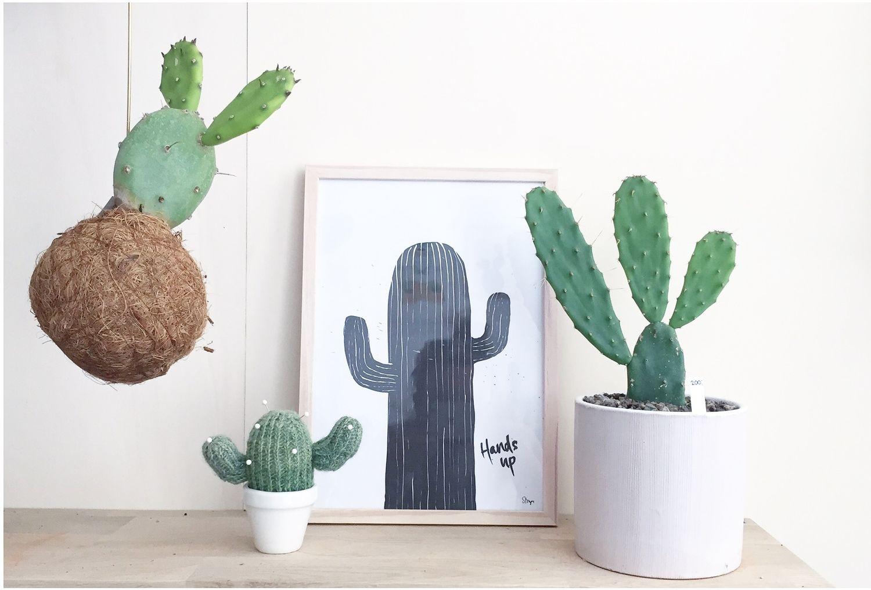 Concept stores, copenhagen and cactus on pinterest
