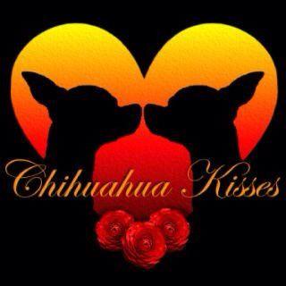 Chi love