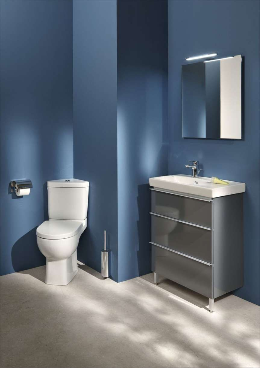 toilettes peinture bleu fonce jacob delafon