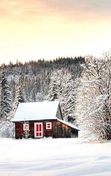 cottage Cabin in the woods, Ferienhaus, Gartenhaus holz