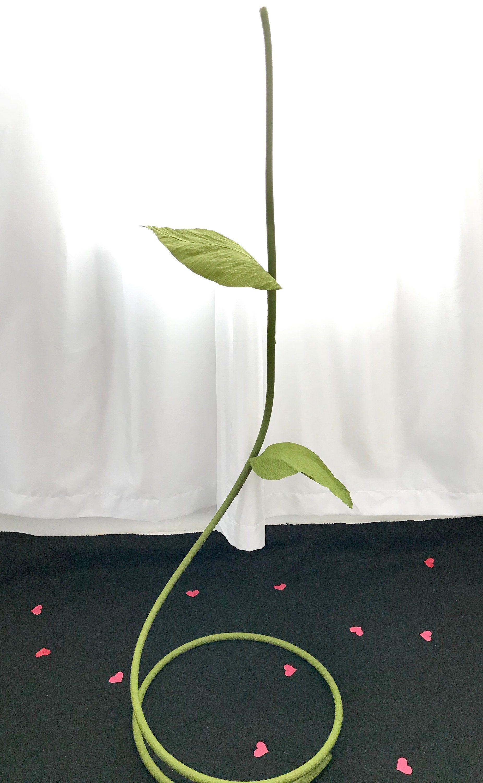 Giant Flower Stem Paper Flower Stems Giant Paper Flower Stem