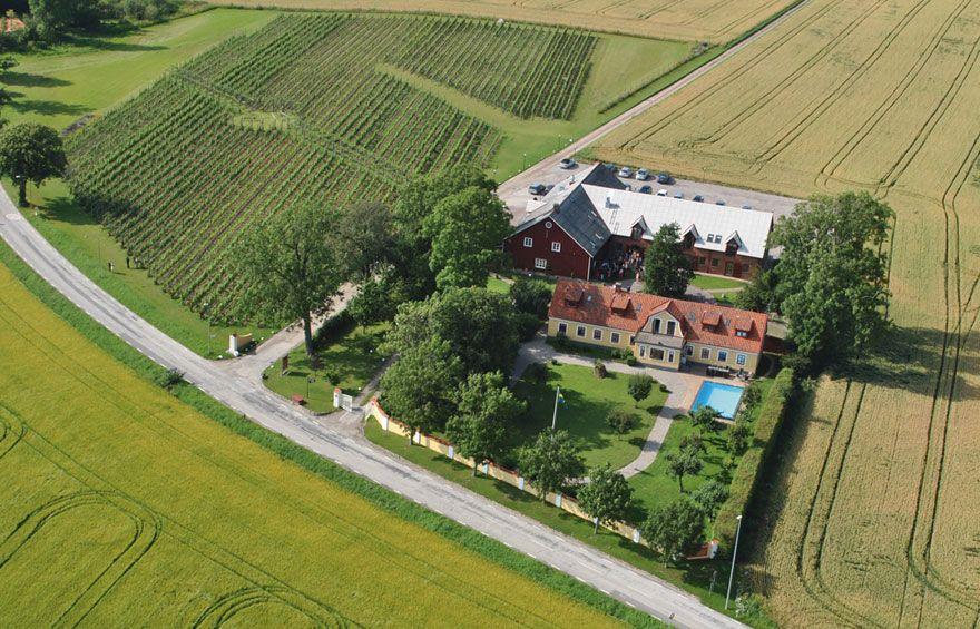 Image result for Flädie vineyard