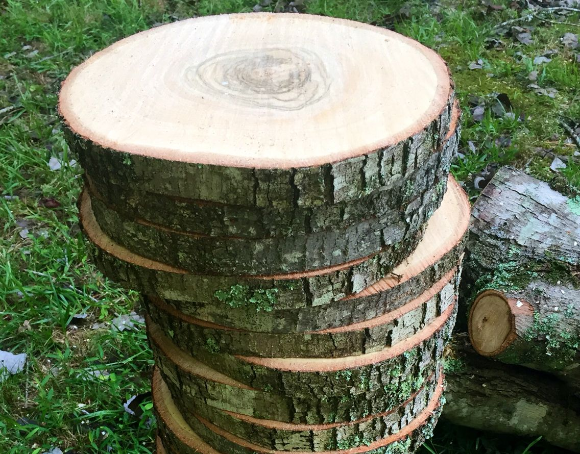 These Are Used As Wood Slice Centerpieces And Rustic Wedding Decor At A Rustic Themed Wedding Wood Centerpieces Wood Slice Centerpieces Wood Slices
