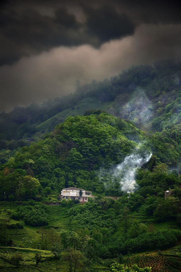 Ordu hills ⚓ Eastern Blacksea Region of Turkey #karadeniz #doğukaradeniz #ordu (Photo: Aylin Kınacıoğlu)