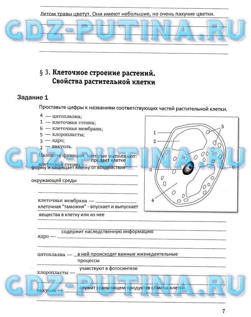 Тесты руский язык 3 класс 21 век
