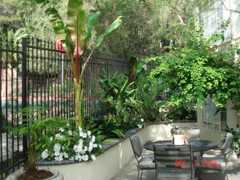 Fabulous Concept Design For Tropical Garden Ideas 17 Best Ideas About Small Tropical Garde Tropical Garden Design Urban Garden Design Tropical Landscape Design