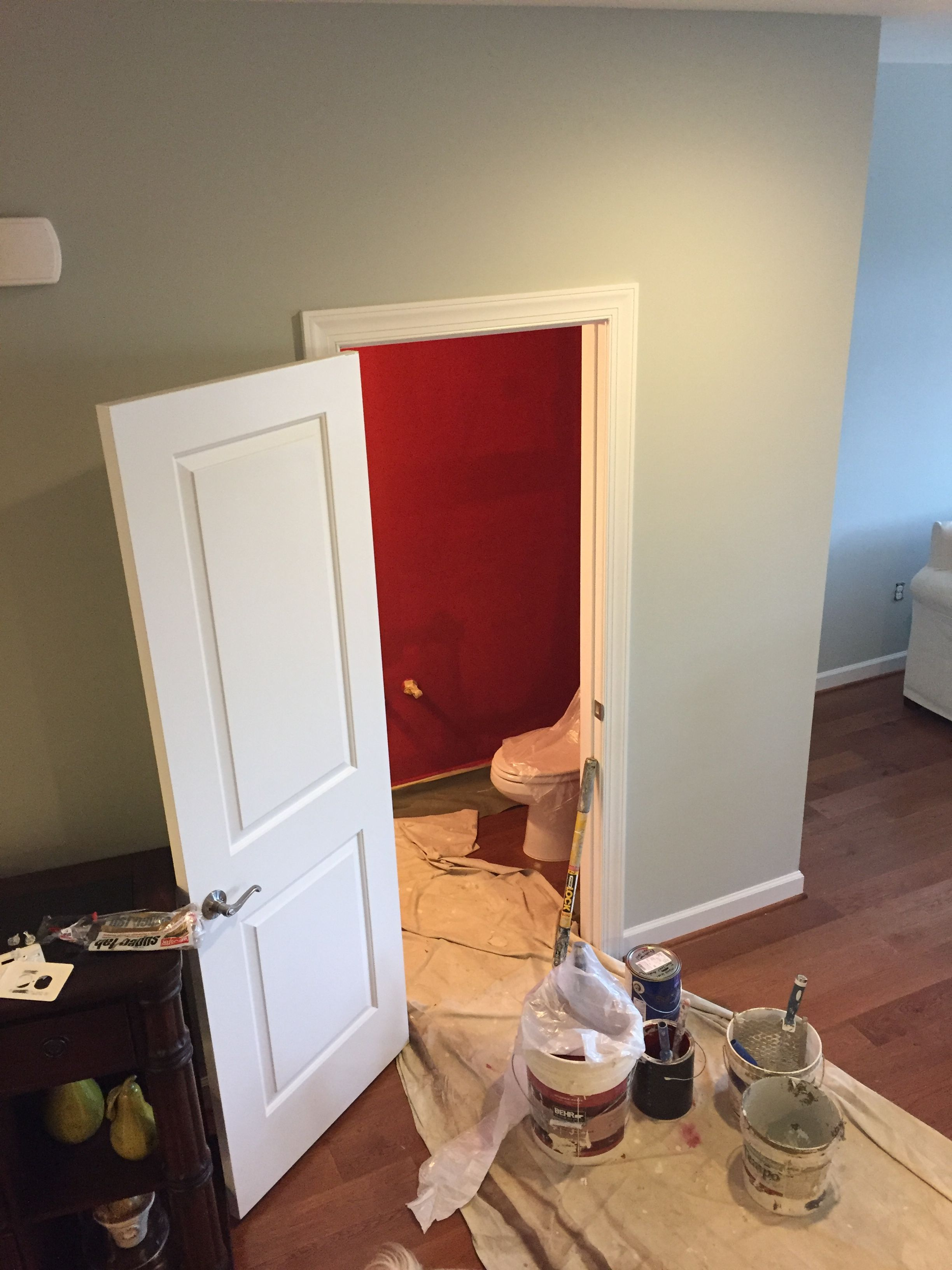 Sherwin Williams Silver Strand And Red Bay