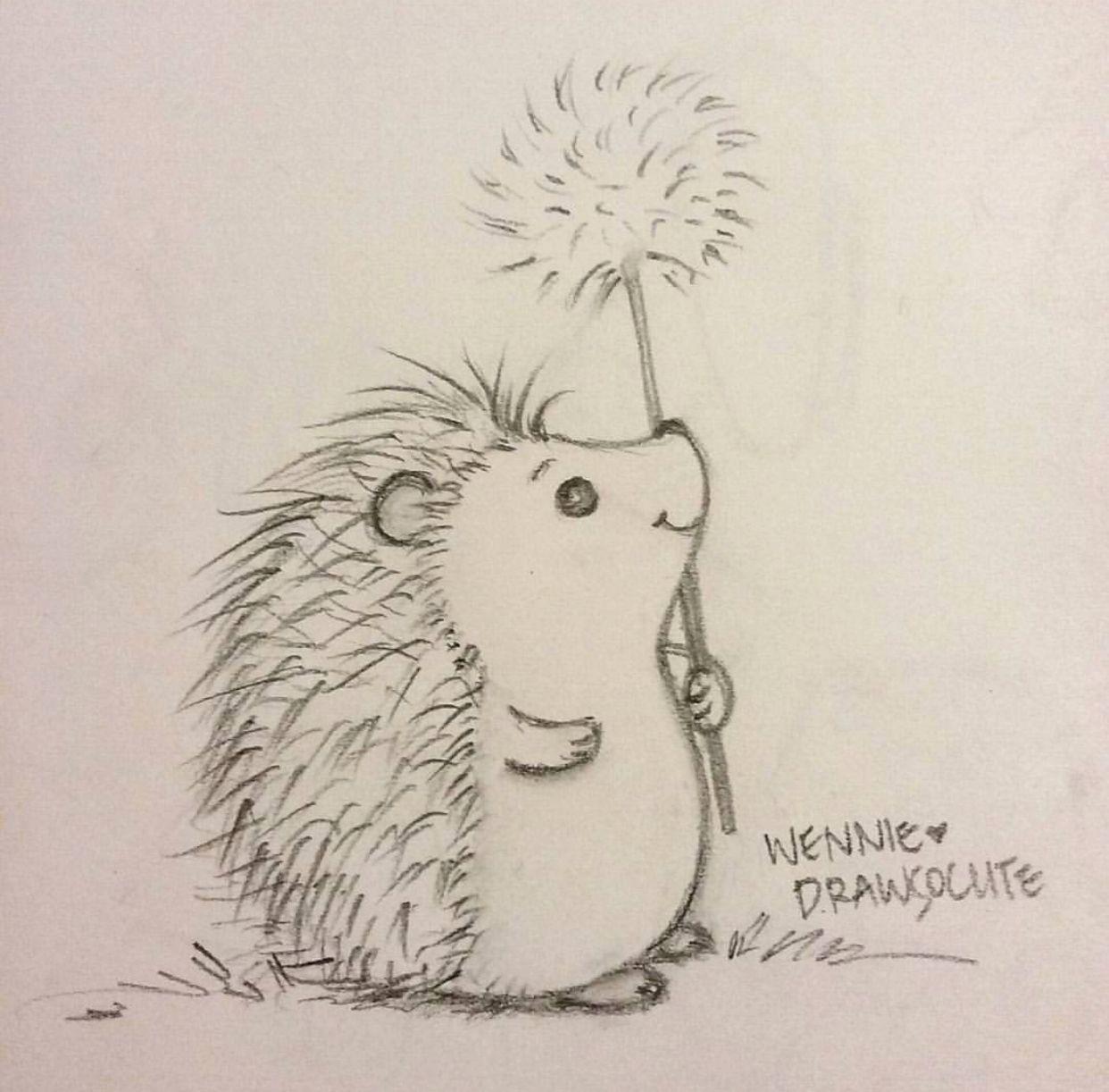 Cute Little Hedgehog Draw So Cute Animal drawings