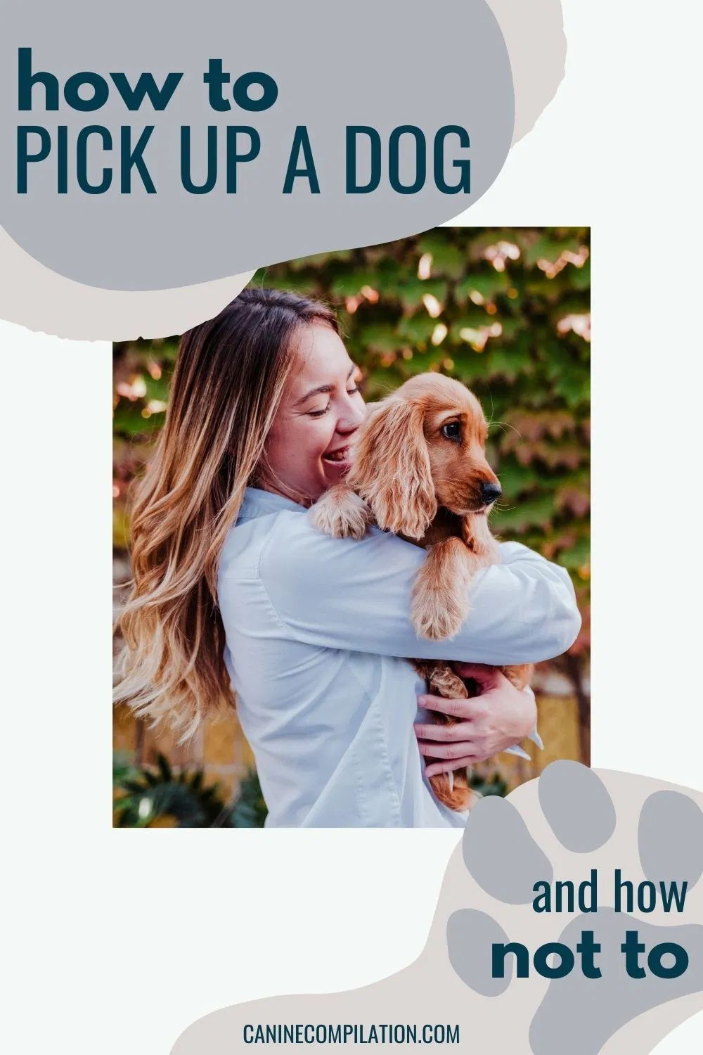 How To Pick A Dog Up And How Not To Pregnant Dog Dogs Pet Parent