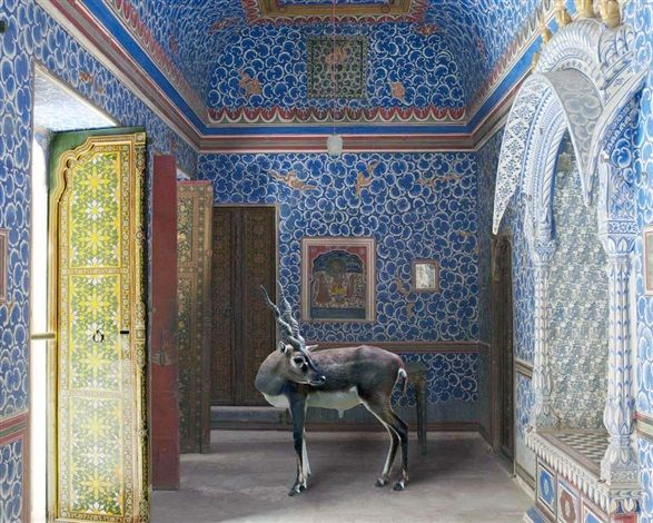The Sound of Rain, Junargarh Fort, Bikaner by Karen Knorr