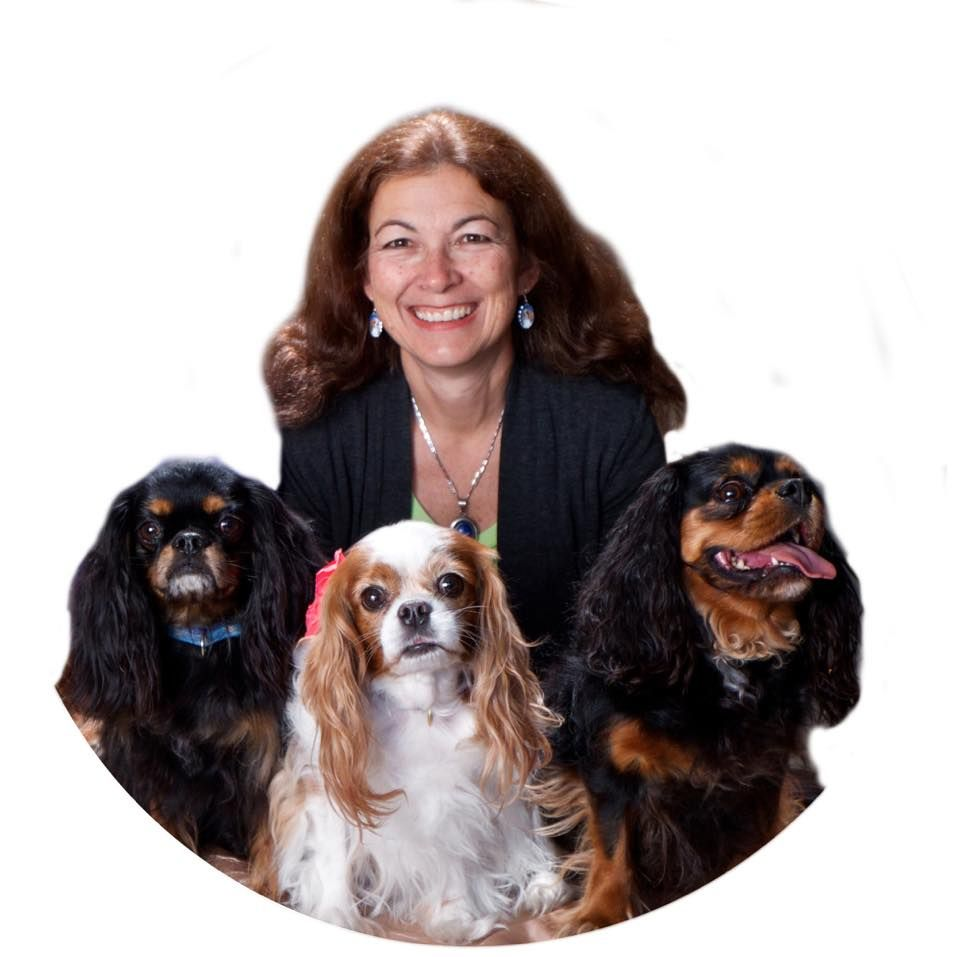 Veterinarians Who Have Joined The Protect The Pets Movement Find One Near You Healthy Pets Pets Medication For Dogs