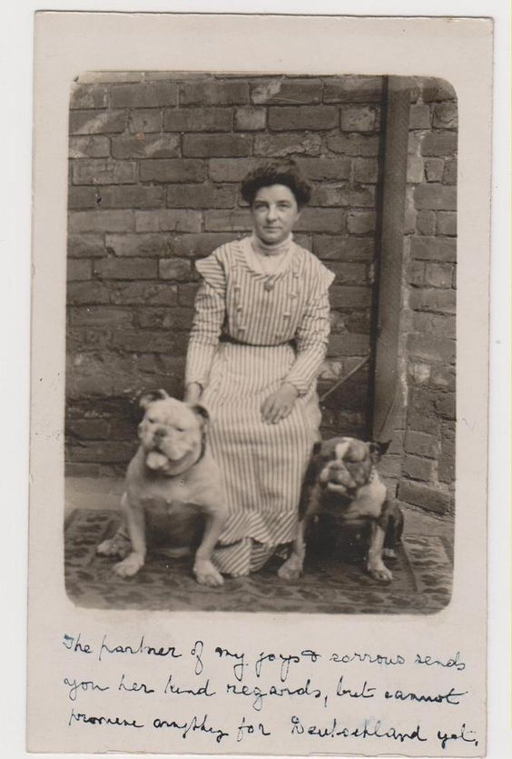 BULLDOG with Woman Portrait Real Photo Postcard RPPC postcard. (c. 1904-1915). Pinned by Judi Crowe.