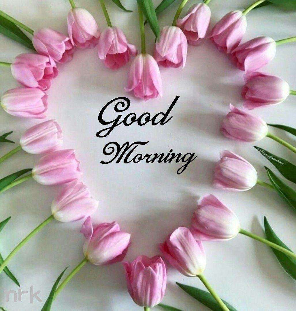 Good Morning Greetings Quotes Good Morning Morning Sweetheart