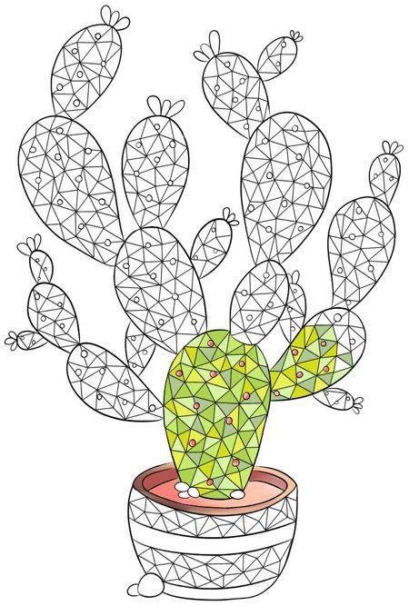 13 Best Succulent & Cactus Coloring Books & Pages ...